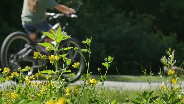 Thumbnail for Park Sidewalk - Grass, Flowers, Bikes, Kids