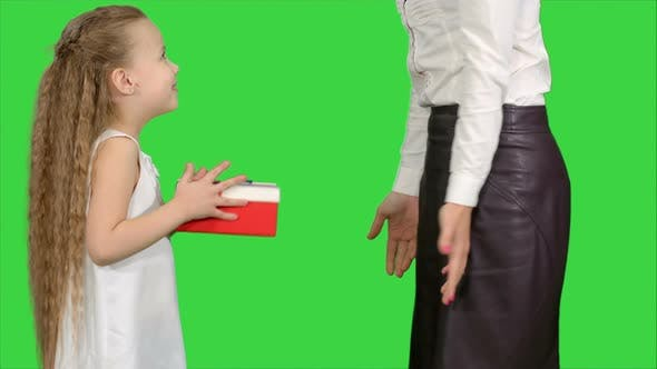 Thumbnail for Young Charming Mother and Her Cute Daughter Opened Christmas Gifts on a Green Screen, Chroma Key