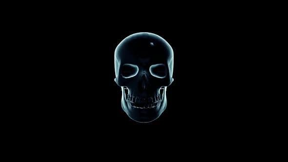 Thumbnail for Glitch Skull