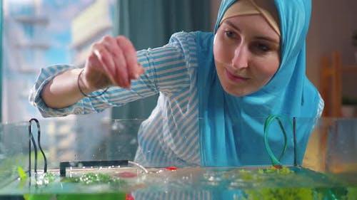 Muslim Woman Feeds Fish in an Aquarium at Home Close Up