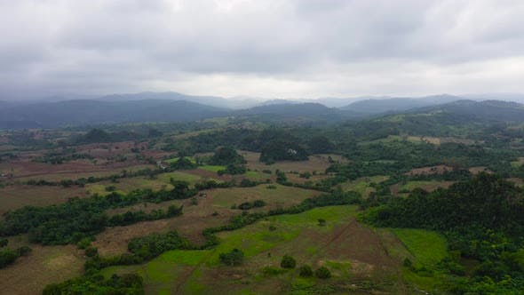 Thumbnail for Aerial View of Rice Plantation,terrace, Agricultural Land of Farmers. Tropical Landscape
