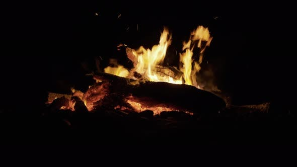 Thumbnail for Bonfire Burning Trees at Night. Bonfire Burning Brightly, Heat, Light, Camping, Big Bonfire, Close
