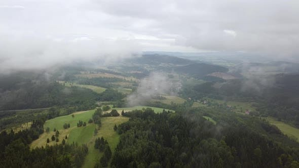 Flying in clouds above the forests