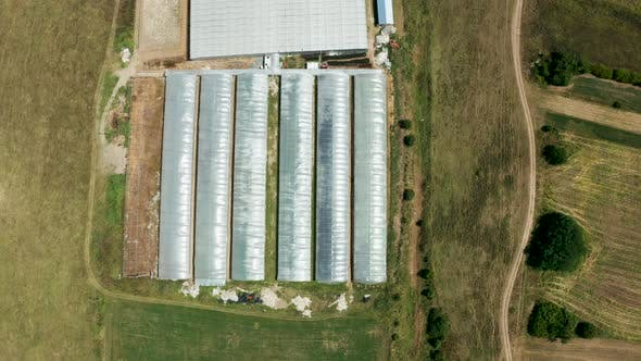 Thumbnail for Drone Flying Over a Industrial Greenhouse with Vegetables