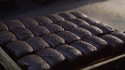 View of Tray with Freshly Baked Loaves of Rye Bread in the Bakery