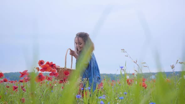Thumbnail for Portrait of Pretty Girl Walking in Poppy Field Gathering Flowers in the Wicker Basket