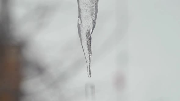 Thumbnail for Melting Icicle