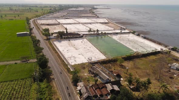 Thumbnail for Shrimp Farming in Indonesia