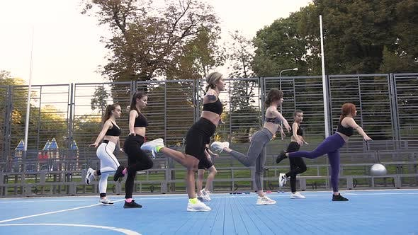 Thumbnail for Slim Women Standing on One Leg and Keeping Balance on Their Fitness Training in the Park