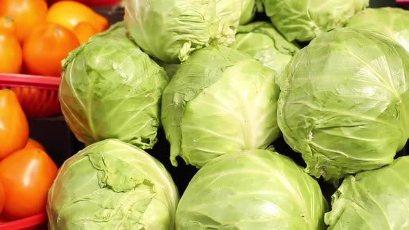 Thumbnail for Close Up Video of a Lot of Great Tasty Fresh Green Cabbage Swings Lying on the Counter Before Being