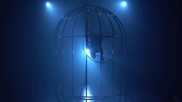 Cover Image for Girl on a Hoop in a Cage
