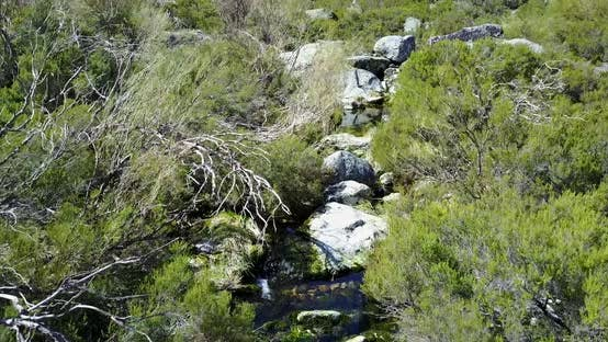 Thumbnail for Flying over a stream at Serra da Estrela Natural Park