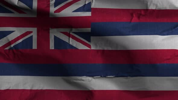 Hawaii State Flag 4K