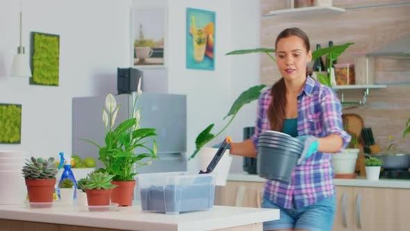 Apporter des pots de fleurs sur la table de travail