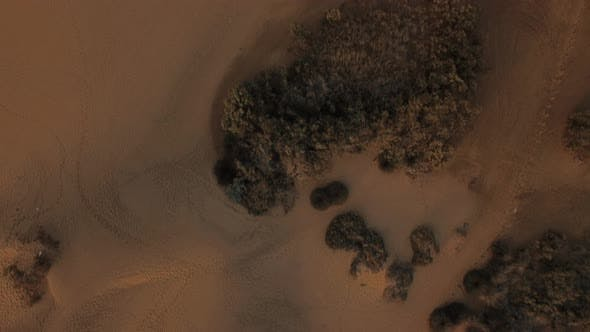Cover Image for Aerial Scene with Sandy Relief and Dunes