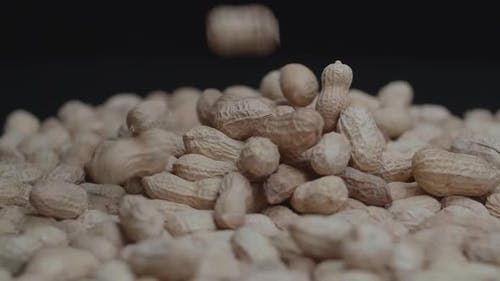 Peanuts Comes With The Added Bonus Of Healthful Nutrients
