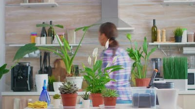 Housewife Putting Flowerpots on Table