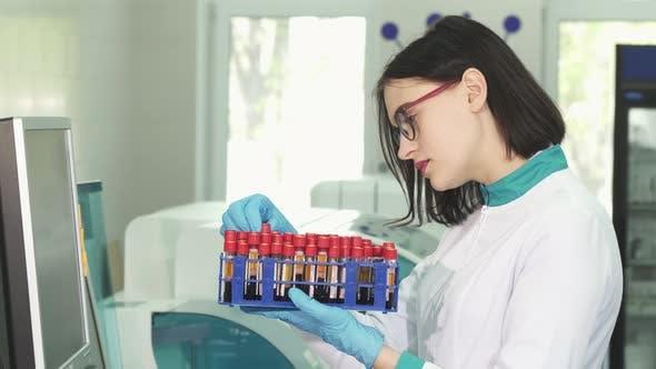 Thumbnail for Young Female Scientist Untersuchung Reagenzgläser mit Blutproben