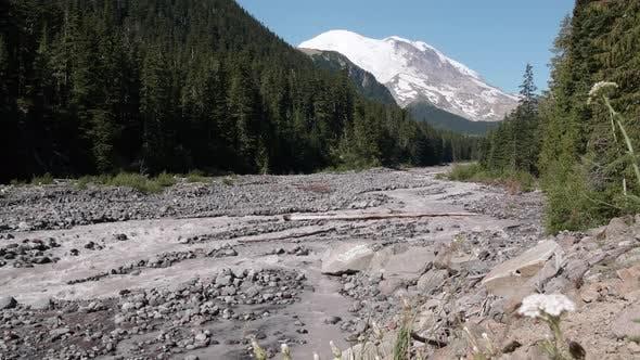 Thumbnail for White River In Mt Rainier National Park