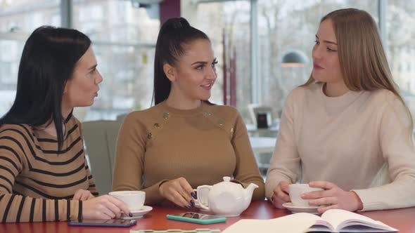 Thumbnail for Portrait of Three Young Beautiful Caucasian Woman Sitting at the Table in Cafe and Talking. Charming