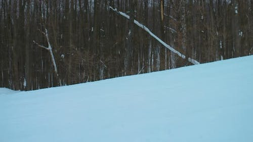 Professional Snowboarder Slides Off a Snowy Slope