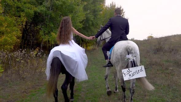 Thumbnail for Just Married Bride and Groom. Girl and Guy Riding Two Horses. Back View. Close Up