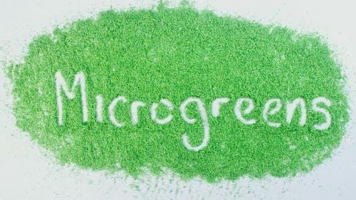 Green Writing   Micro Greens