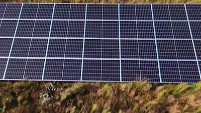 Solar Panels Farm in the Field