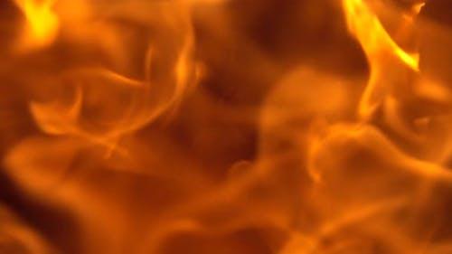 Burning Fire, Firewood Coal Closeup