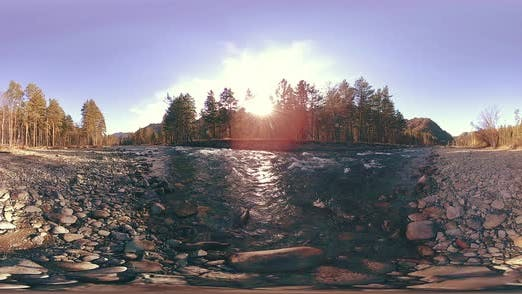 Thumbnail for 360 VR Virtual Reality of a Wild Mountains, Pine Forest and River Flows. National Park, Meadow and