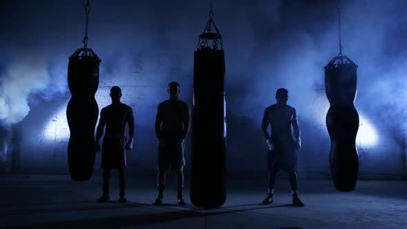 Thumbnail for Boxing Workout Training