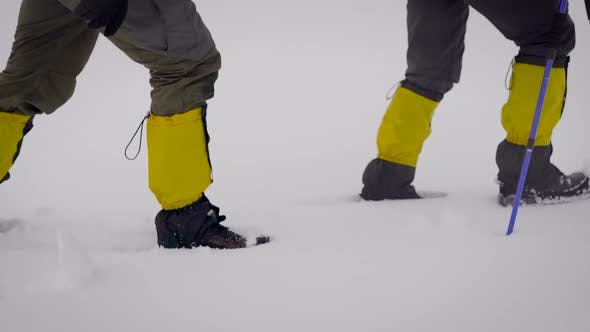 Thumbnail for Two Men Went on an Expedition. Professional Trekking Boots and Leggings Help To Move in the Snow
