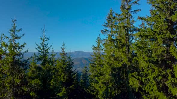 Thumbnail for Flying Over the Carpathian Mountains