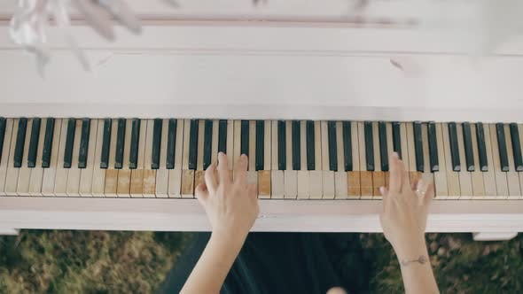 Top View of Female Hands Playing a Gentle Piece of Classical Music on a Beautiful Grand Piano. Woman
