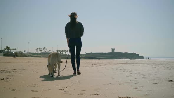 Cover Image for Back View of Young Lady Walking with Dog on Sandy Beach