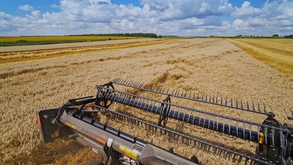 Thumbnail for Special machine harvesting crop in fields