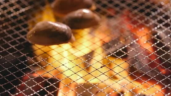 Fresh clam on barbecue grilled metal net