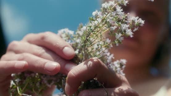 Thumbnail for Picking thyme