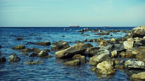 Thumbnail for Möwen auf den Felsen auf dem Horizont Schiffe in der Roadstead