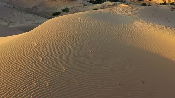 Cover Image for Aerial Top View on Sand Dunes in Desert at Sunrise