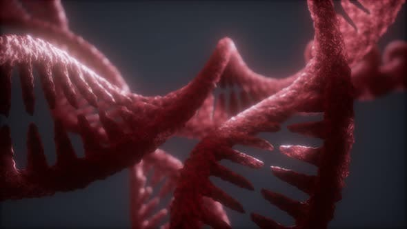 Thumbnail for Loop Double Helical Structure of Dna Strand Close-up