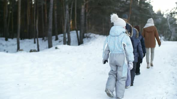 Thumbnail for Large Family Walking in Snow-Covered Forest