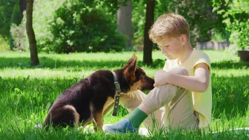 Cheerful Boy Playing with Black and Brown Puppy at Park
