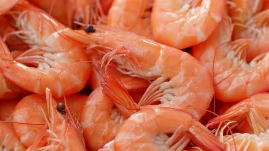 Cover Image for Cooked shrimp on dish