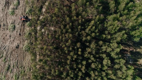 Thumbnail for Cut Down Forest Deforestation Area Aerial View