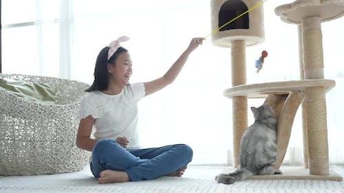 Nettes asiatisches Mädchen spielt mit Kätzchen Zeitlupe