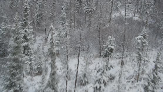 Aerial helicopter shot, tilt down above frozen river valley, flanked by pine trees, ice floes, rocky