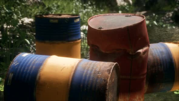 Thumbnail for Rusty Barrels in Green Forest