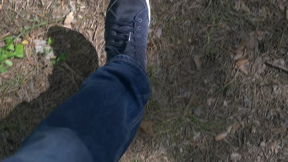 Thumbnail for Walking In Forest 3