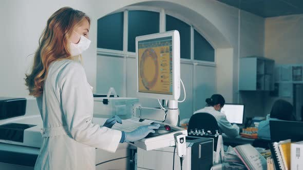 Work in the Laboratory